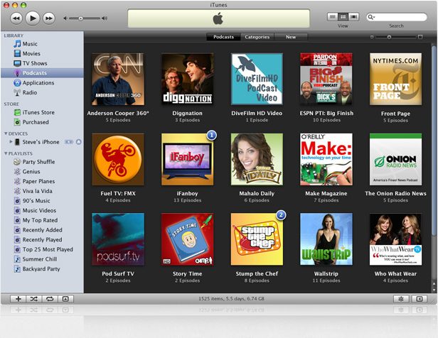 iTunes 8 browser