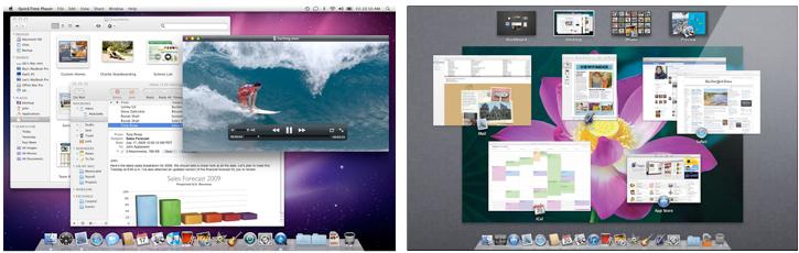 OS X Snow Leopard, Lion